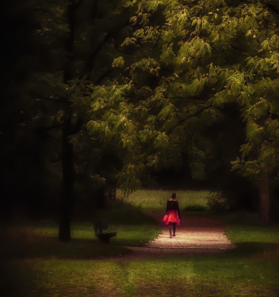 a walk in the park by jerome