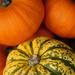Autumn fayre