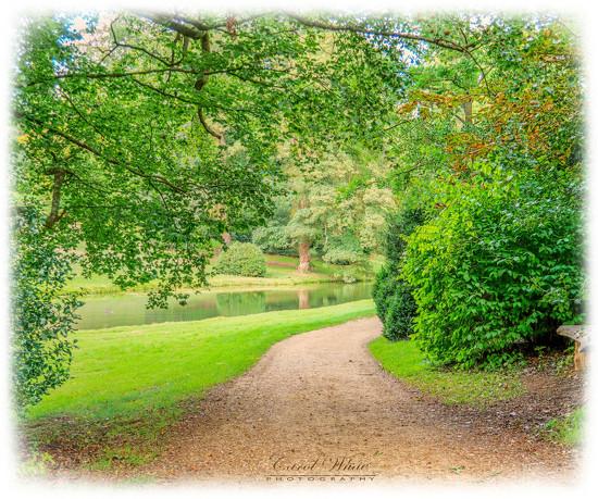 Path By The Lake by carolmw