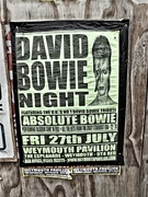 25th Aug 2018 - Past Posters #2 - Absolute Bowie