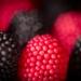 RaspberryBlackberry gumies