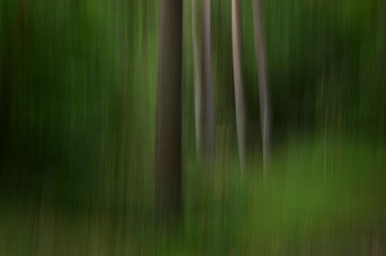 ICM for Nifty Fifty Challenge by fbailey