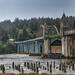 McCollough Bridge Over the Suislaw River