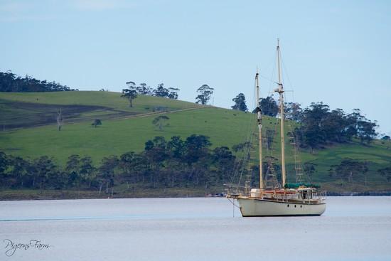 Time to set Sail by kgolab