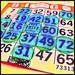 73313 That's A Winning Bingo