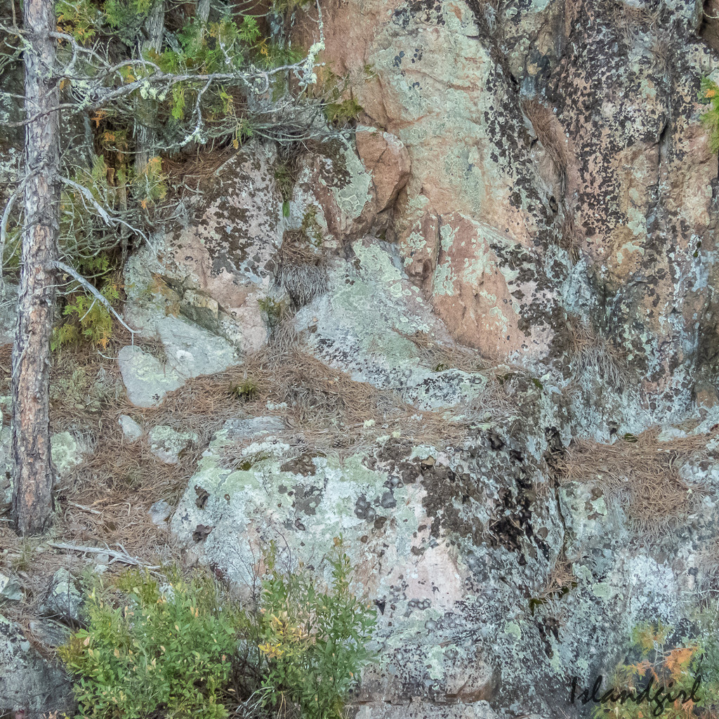 Rock textures  by radiogirl