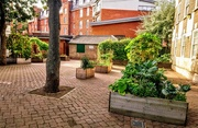 10th Sep 2018 - Secret garden, Vincent Street