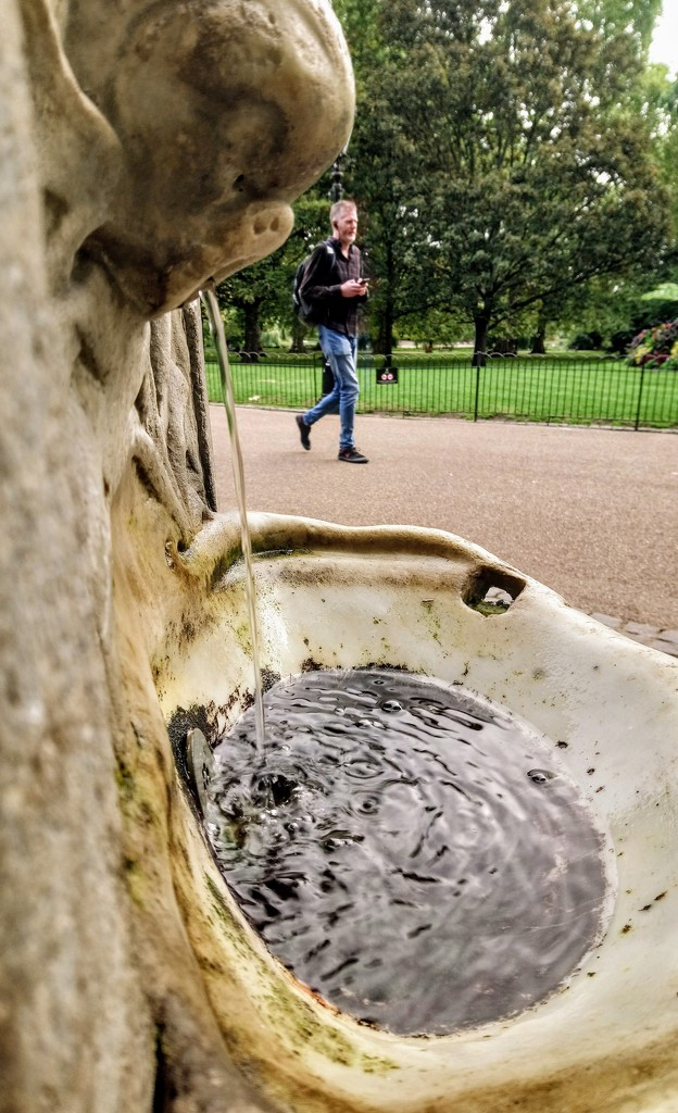 Drinking fountain in St James's Park by boxplayer