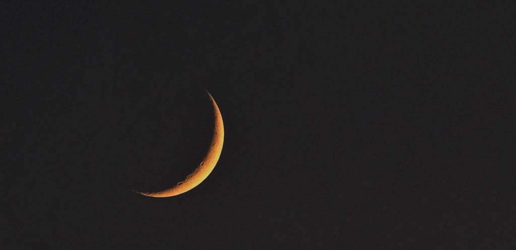 Dark Side of the Moon by carole_sandford