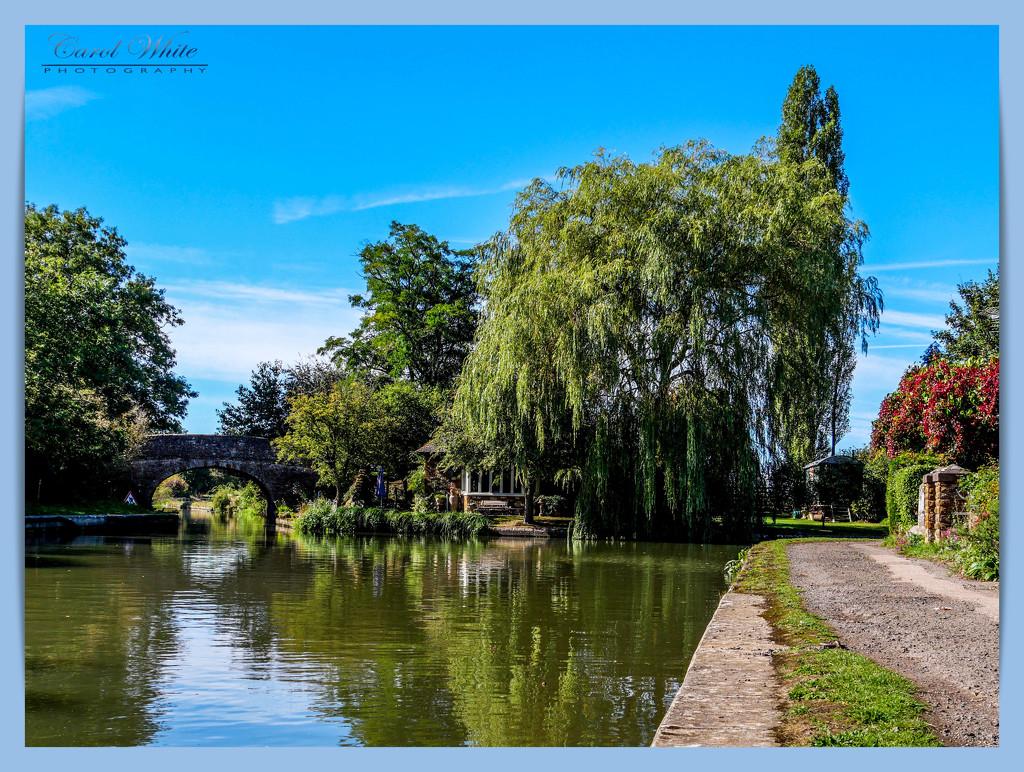 Canalside View by carolmw