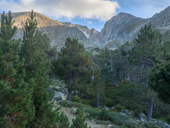 View towards Canigou from the refuge des Cortalets by laroque