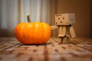 26th Sep 2018 - Tiny Pumpkin