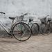Bikes in Beijing by yaorenliu