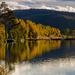 Autumn on Svorksjøen by elisasaeter