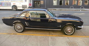 30th Sep 2018 - 66 Mustang