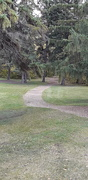 30th Sep 2018 - A Pathway In The Park