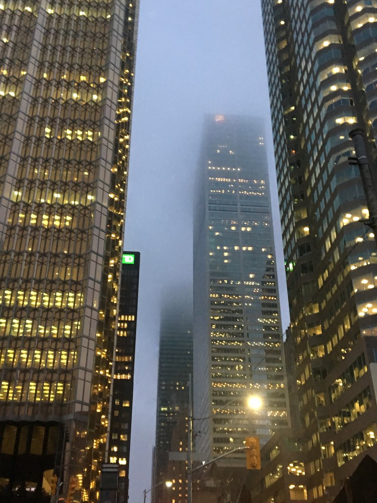 Foggy morning in the city by chloette