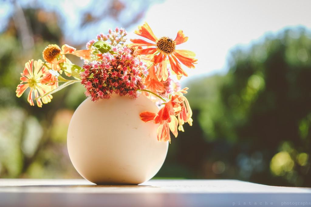 autumnsummer by pistache