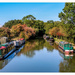 Narrowboats And Reflections