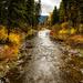 Logan Creek by 365karly1