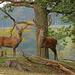 Oh Deer, What A Surprise. by shepherdman