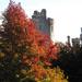 Autumn colour at Arundel Castle by josiegilbert
