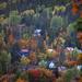Autumn snapshot