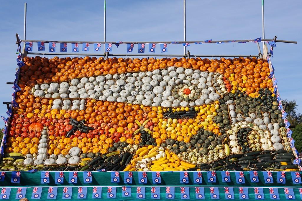 Pumpkin Patch by 30pics4jackiesdiamond