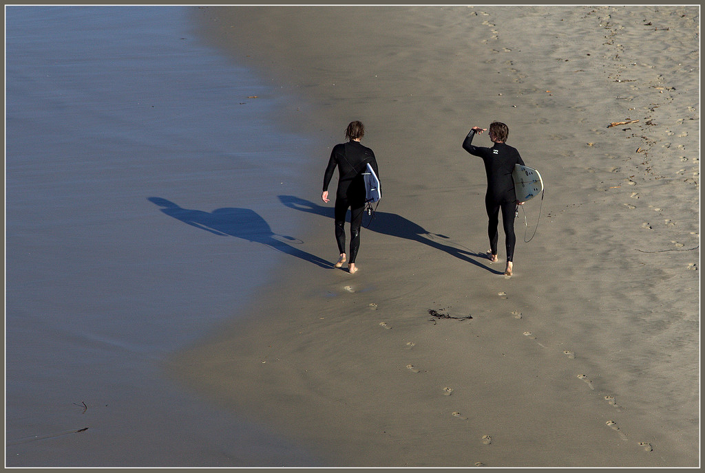 The surfies by dide