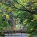 Bridge in the park by kork