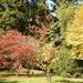 Autumn Walk at Hergest Croft