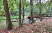 11th Oct 2018 - Bridge across the creek