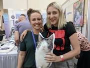 5th Aug 2018 - Cat Con