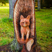 Fox carved into wood