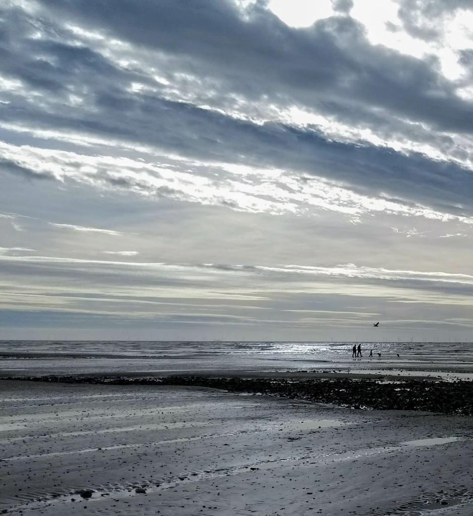 Low tide I by 4rky
