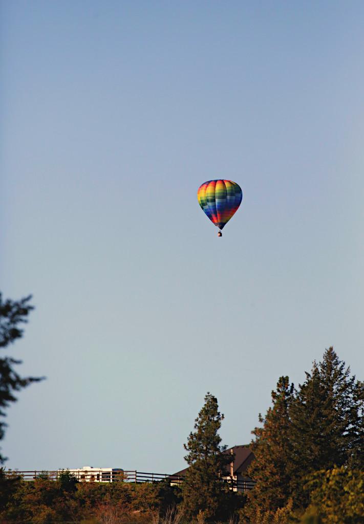 Morning Balloon by gq