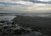 14th Oct 2018 - Low Tide II
