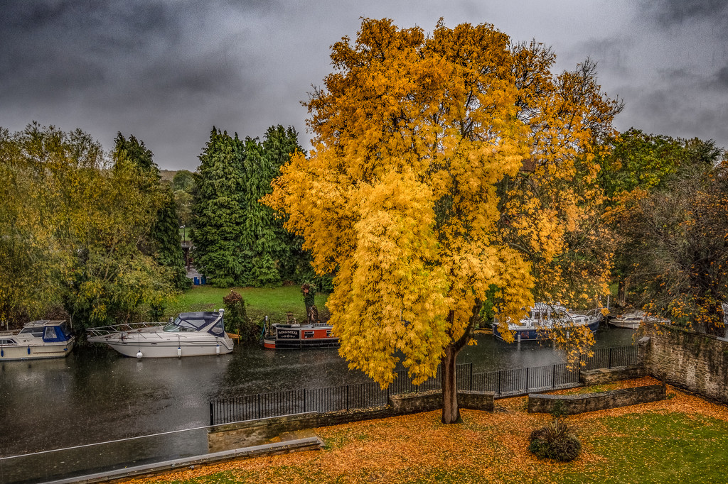 Thames colour by inthecloud5