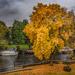 Thames colour
