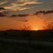 Country Walk at Sunset by kareenking