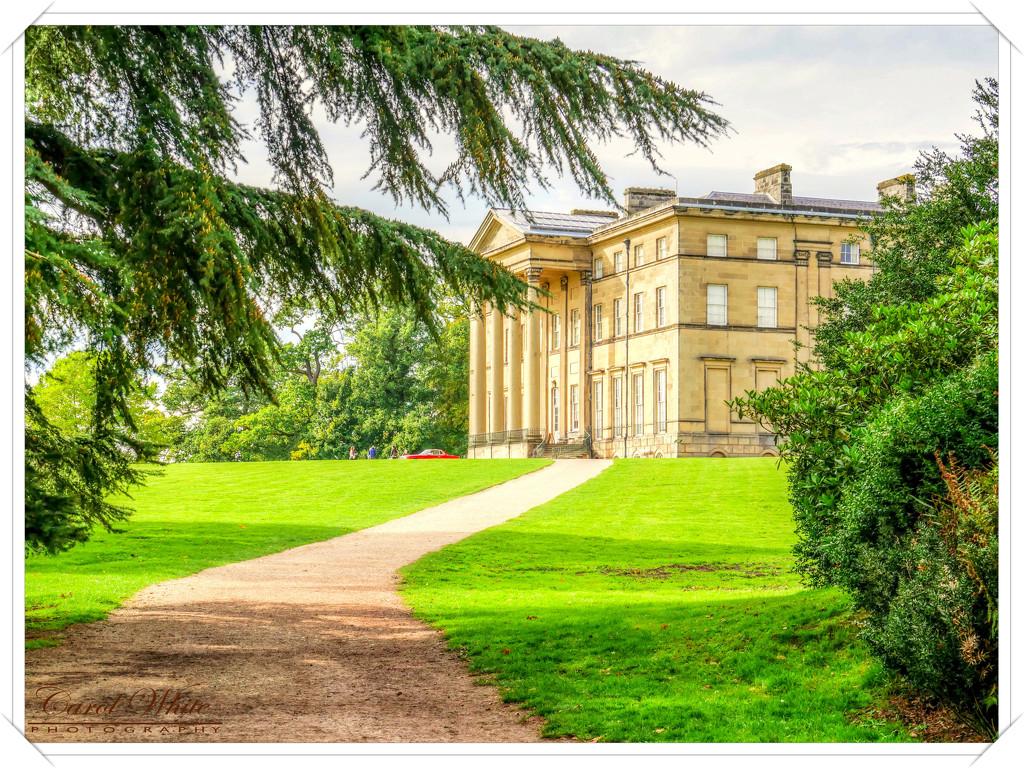 Attingham Park,Shropshire by carolmw