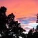 Variegated sky