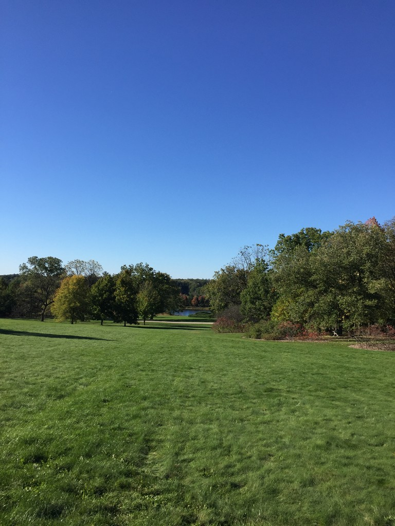 Frost Hill at the Morton Arboretum  by kchuk