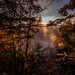 framed mist by adi314