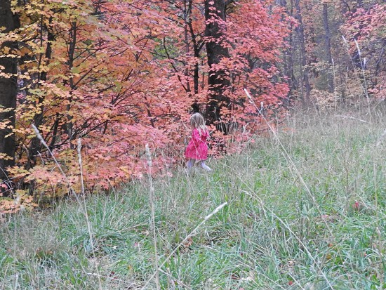 October World by janeandcharlie
