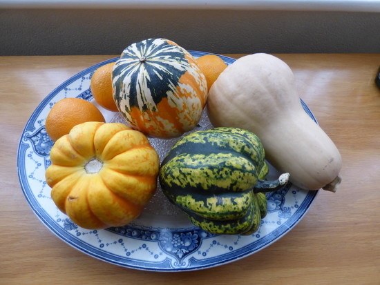 Autumn  by beryl
