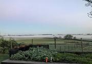 18th Oct 2018 - Morning fog