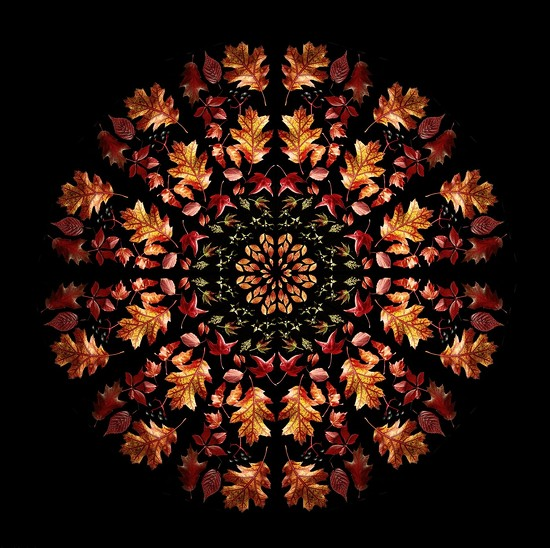 2018-10-18 autumn kaleidoscope by mona65