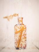 15th Oct 2018 - rusty bottle