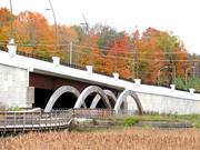 19th Oct 2018 - New Bridge